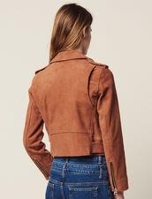 Suede Perfecto Jacket : Blazers & Jackets color Terracotta