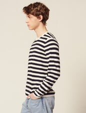 Breton Sweater In Cotton And Cashmere : All Selection color Ecru