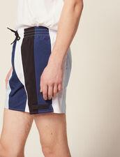 Multi-Coloured Striped Swim Shorts : All Selection color Blue
