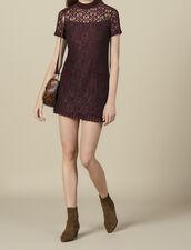 Short lace dress : LastChance-ES-F40 color Plum